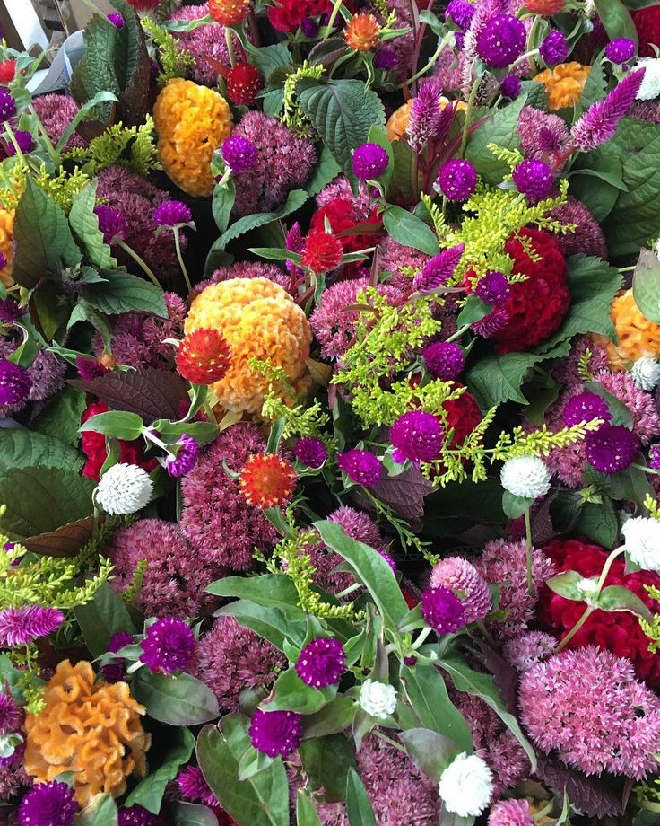 A sea of flower bouquets headed to @farmaid today!  Great organization great event!  Doing incredible things to help American farmers:)) If you are going to the concert enjoy the show!  #bloomerygrown #locallygrown #flowerfarm #farmaid #pittsburgh