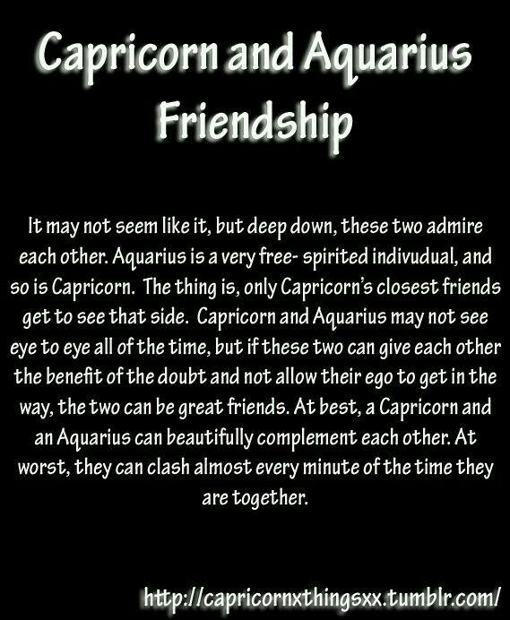 Capricorn and Aquarius friendship