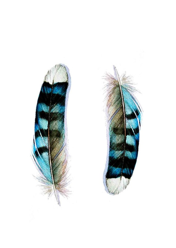 Gorgeous watercolor greeting card of two bluejay feathers!    http://www.etsy.com/listing/83204903/two-blue-jay-feathers-card-blank-card