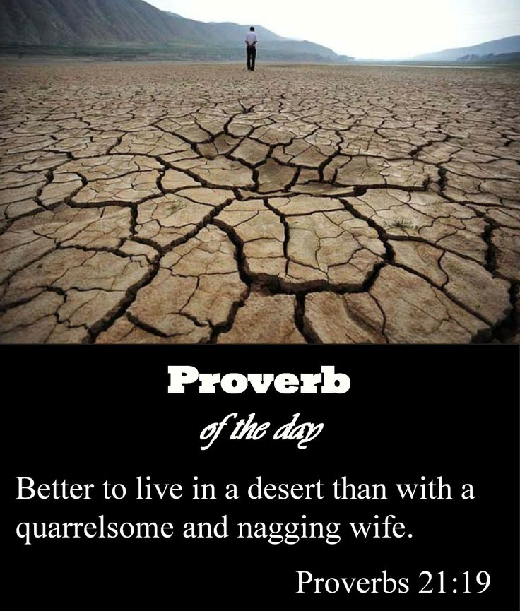200 Best Book Of Proverbs 21 24 Images On Pinterest