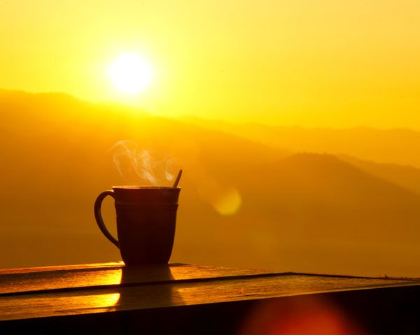 The Simple Thing You Can Do In The Morning To Lose Weight - get some morning sunlight