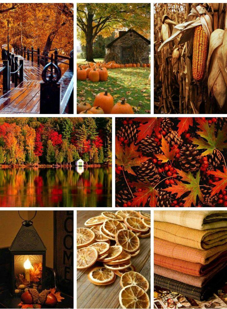 Осень в карелии фото портфолио