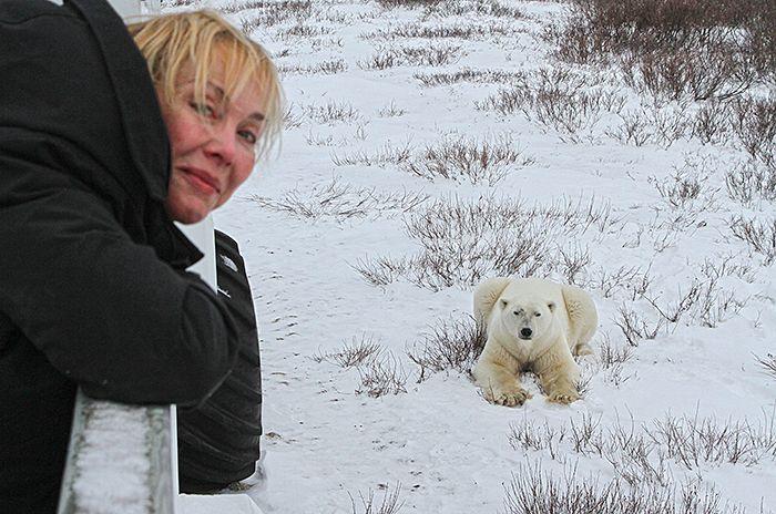 bear-and-becci