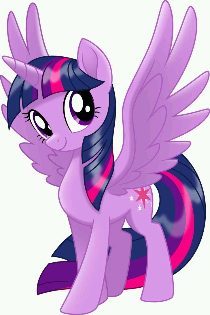 Pin By Jetslin Simbolon On Twilight Sparkle My Little Pony Twilight My Little Pony Movie My Little Pony Drawing