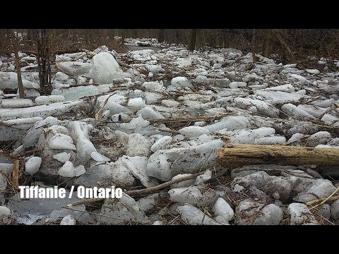 Raging Rivers in Ontario Canada! - Ice jammed and Flooded
