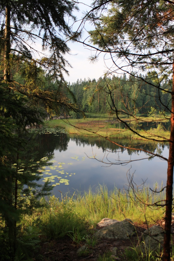Nuuksio National Park in Espoo - future day trip ideas by car. Please like http://www.facebook.com/RagDollMagazine and follow @RagDollMagBlog @priscillacita