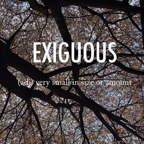 Exiguous |igˈzigyo͞oəs, ikˈsig-| mid 17th century Latin origin #beautifulwords #wordoftheday #cherryblossoms #Korea #Spring
