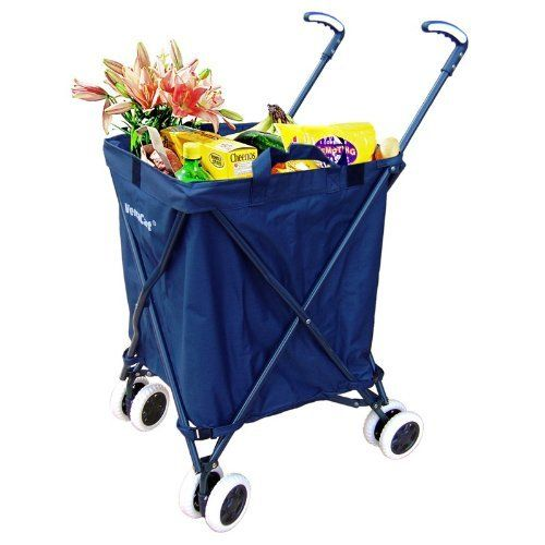 Long time cruising, In port: An umbrella shopping cart for when they won't deliver to the dock