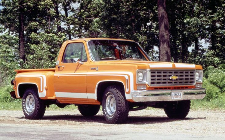 1976 Chevy C10 Scottsdale Stepside by Spw69