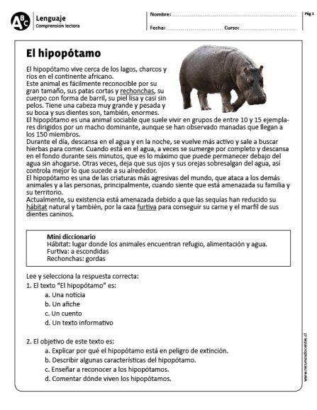 "El hipopótamo"" data-recalc-dims="