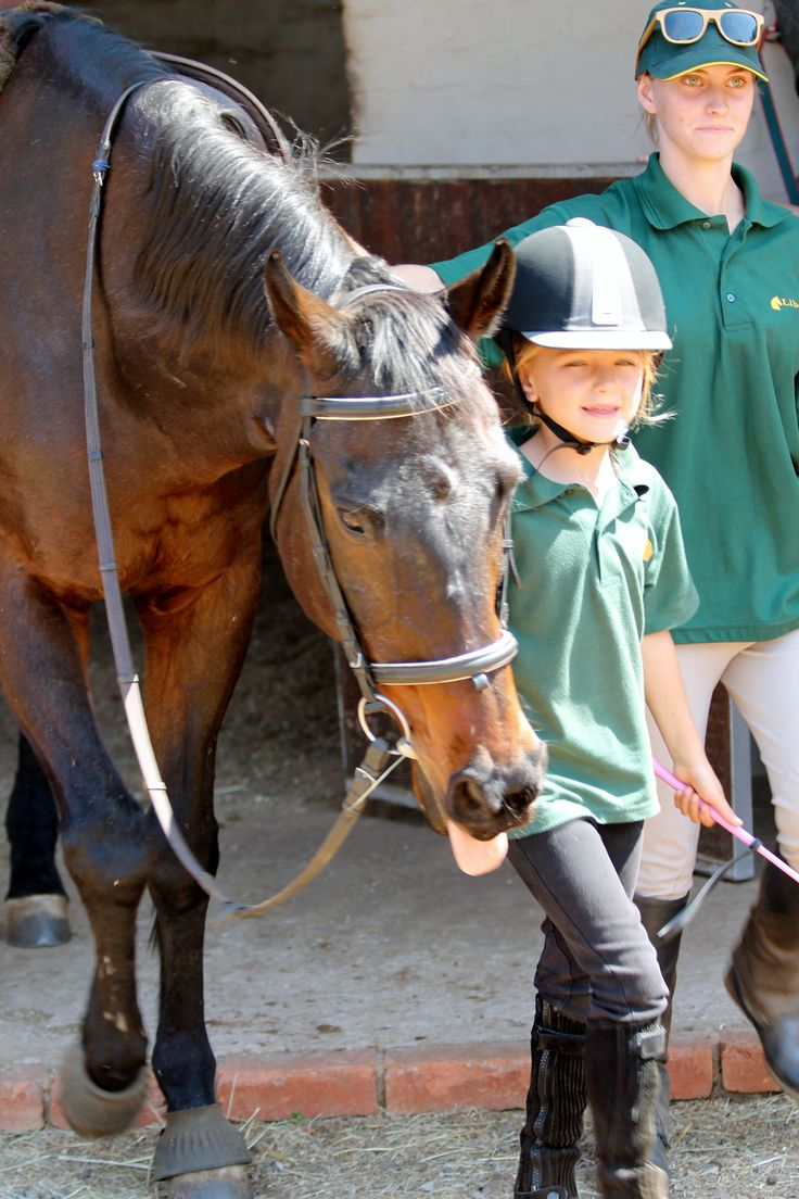Taking one of our reliable Schoolmasters out of his stable - Photo by Michael van Dyk
