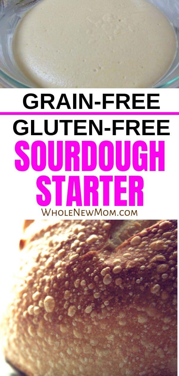 Gluten Free Sourdough Starter Recipe Grain Free Bread Gluten