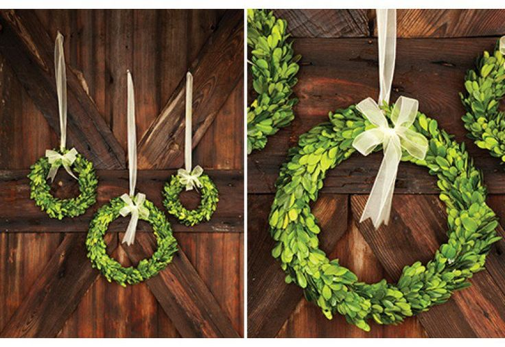 Preserved Boxwood Wreath from Décor Steals