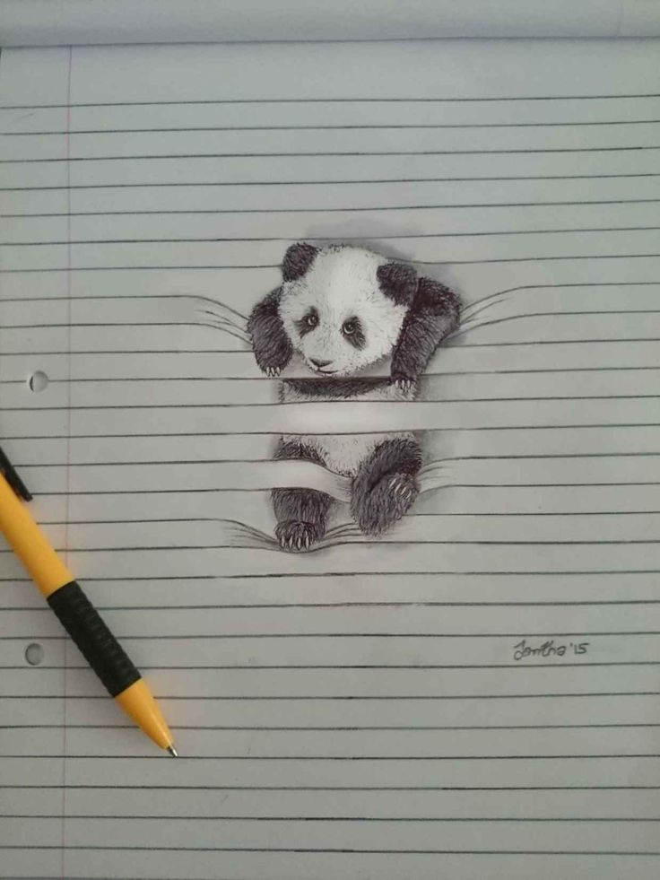 Cute Drawings Show Animals Getting Tangled on the Lines of Note Paper