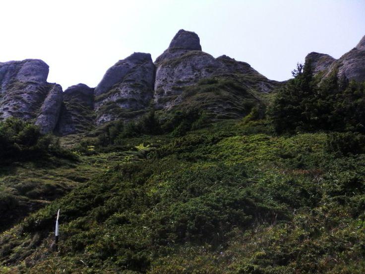 Some random shaped rocks in the Ciucaș mountains