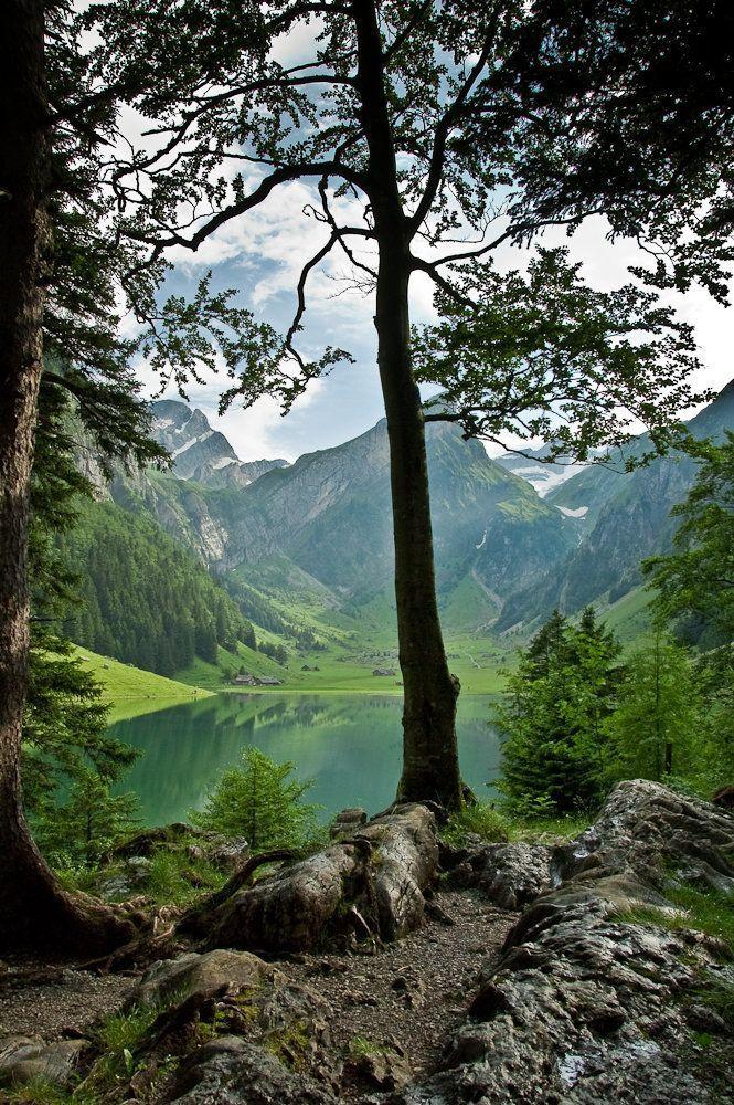 Seealpsee im Alpsteingebirge. Appenzell Innerrhoden. Schweiz. / Lake Seealpsee in the Alps near Appenzell. Eastern Switzerland.
