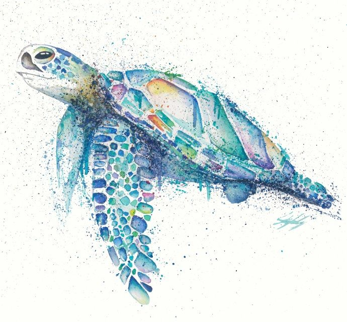Turtle in watercolour, part of the 'Tropical Waters' range by Stephanie Elizabeth Artwork.