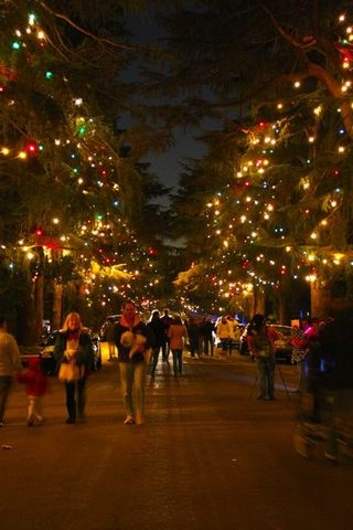 Image result for Christmas Tree Lane, Altadena