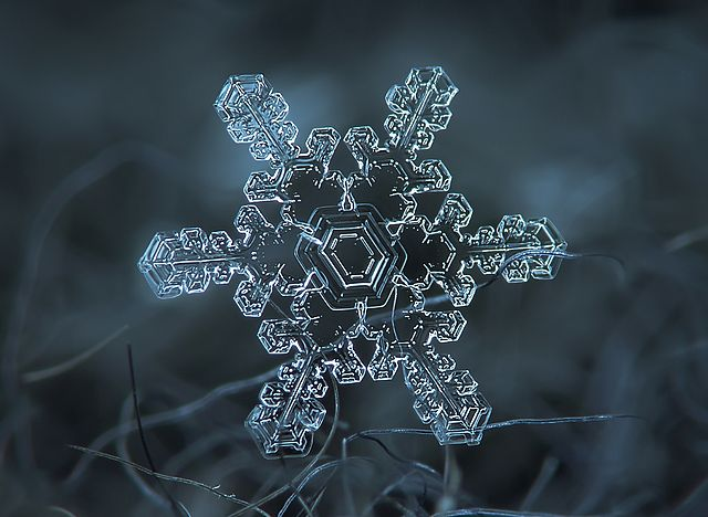 You've Never Seen a Snowflake in This Much Detail | Fox News
