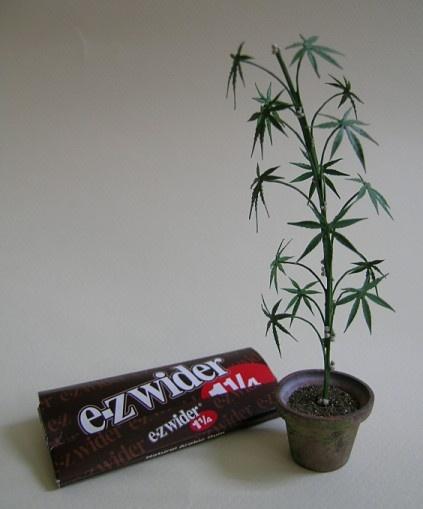 Cannabis sativa # miniatures, plant: Plants Can, Minis Plants, Miniatures Flowers, Miniatures Diy, Favorite Miniatures, Cannabis Sativa, Miniatures A Pots, Things Miniatures, Dollhouses Miniatures