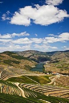 Douro Valley, Porto wine Region, Portugal