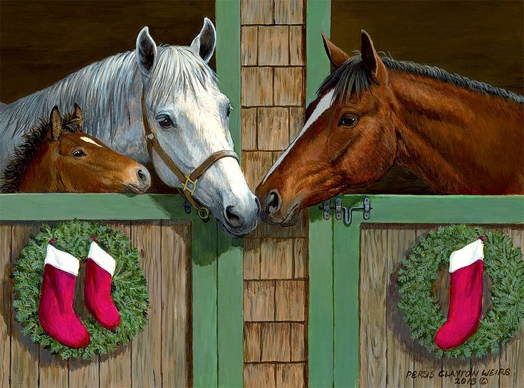 Persis Clayton Weirs / Fillies & Colts / December 2015
