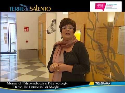 """Vi presentiamo il Museo. Video tratto dal programma """"Terre del Salento"""" di TeleRamadi venerdì 7 febbraio 2014."""