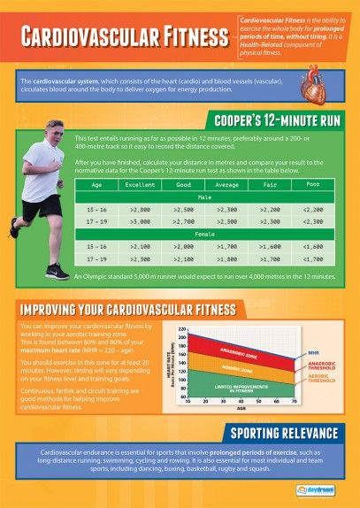 Cardiovascular Fitness Poster