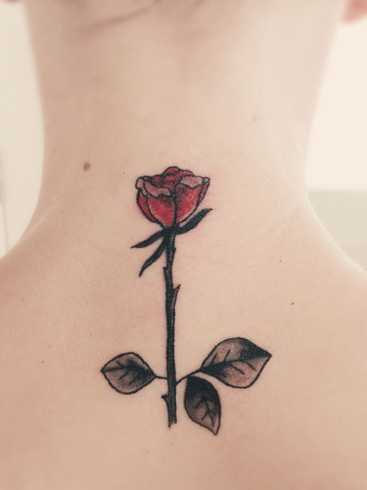 17 best images about tattoos on pinterest shark fin for Long stem rose tattoo