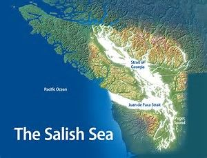 The Salish Sea includes the Strait of Georgia, Jaun de Fuca Strait and Puget Sound