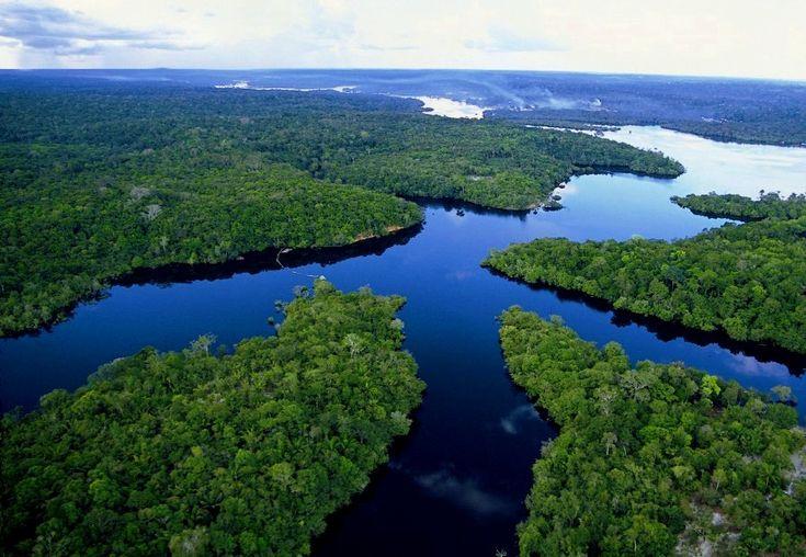 一度は行きたいアマゾン!ブラジルのジャングルでネイチャー体験