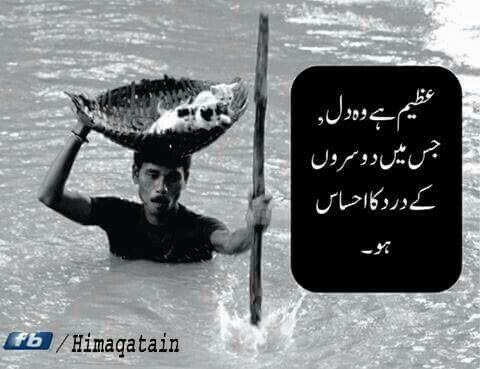 Pin by Syeda Kazmi on Syeda   Inspirational words, Urdu ...