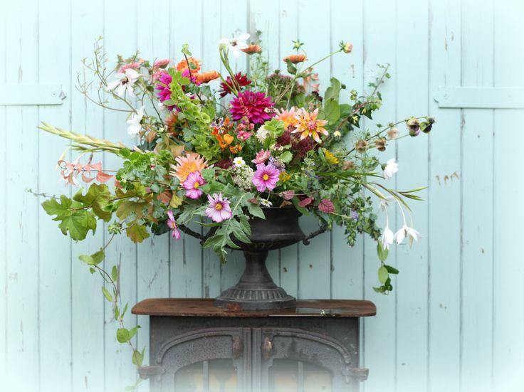 What flowers are in season in October? Seasonal British flowers by Tuckshop Flowers, Birmingham