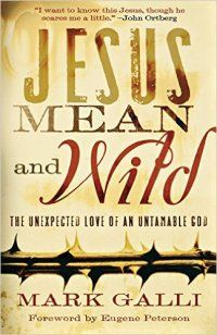 Jesus Mean And Wild reviewed on http://christianbookreviews.lynnbfowler.com