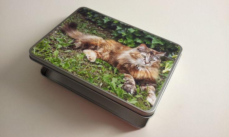 Una scatola di metallo latta in formato A4, A5, A6 stampata con la foto di un bel gatto sdraiato in un prato verde