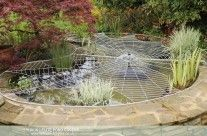 Pond Covers -amazing pics on this site!