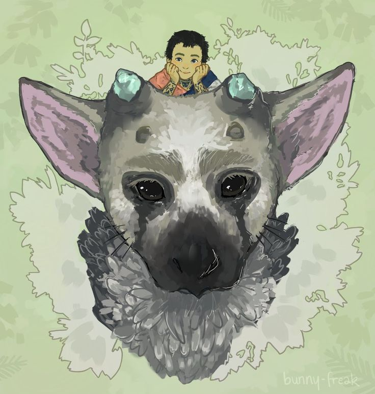 The Last Guardian by syntirulla.deviantart.com on @DeviantArt