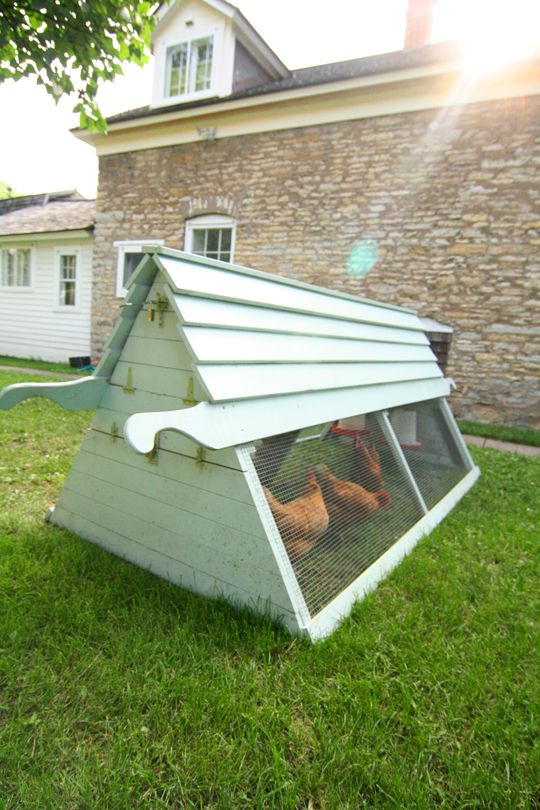 17 best images about chickens and pens on pinterest for Big chicken tractor