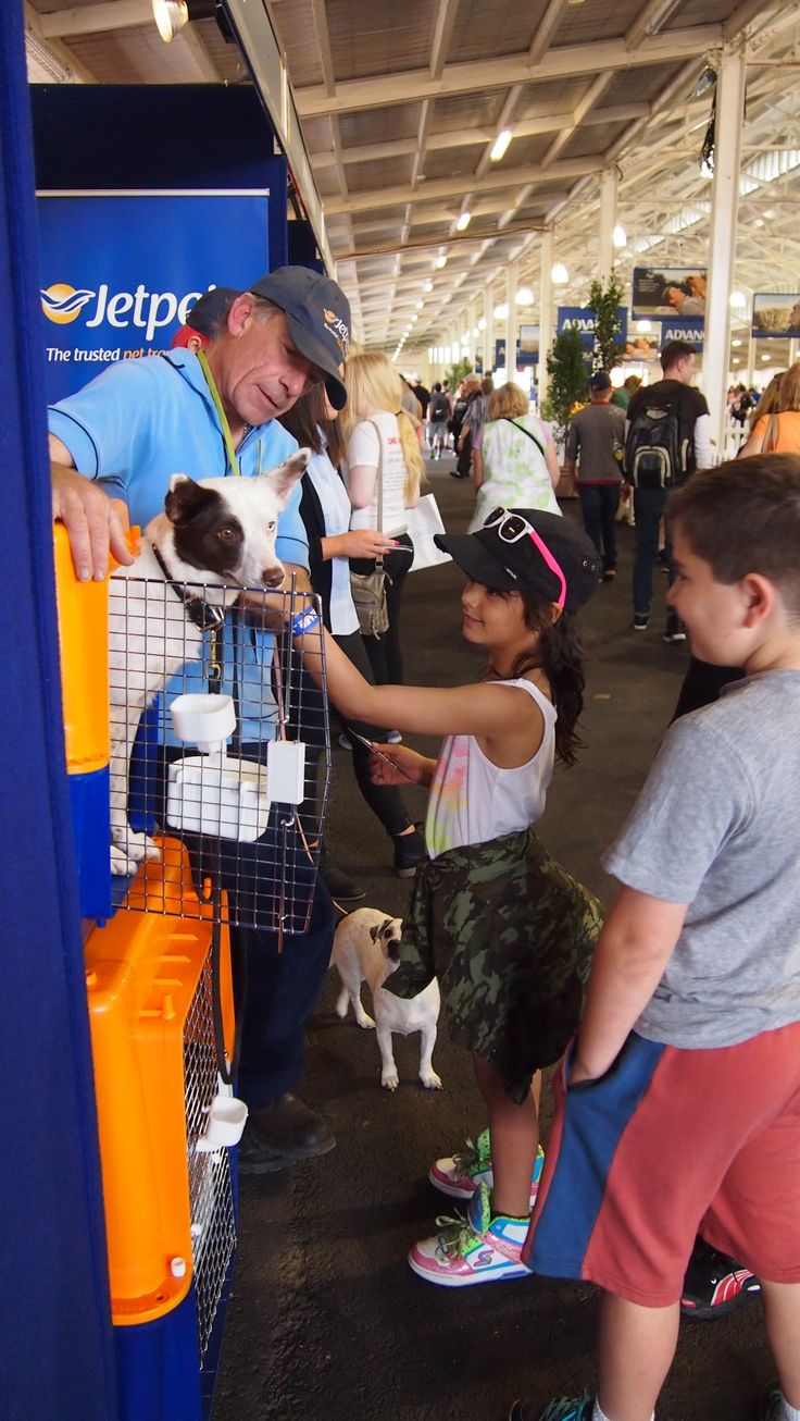 Jetpets at the Royal Melbourne Show in 2013. #melbourne #dogshow