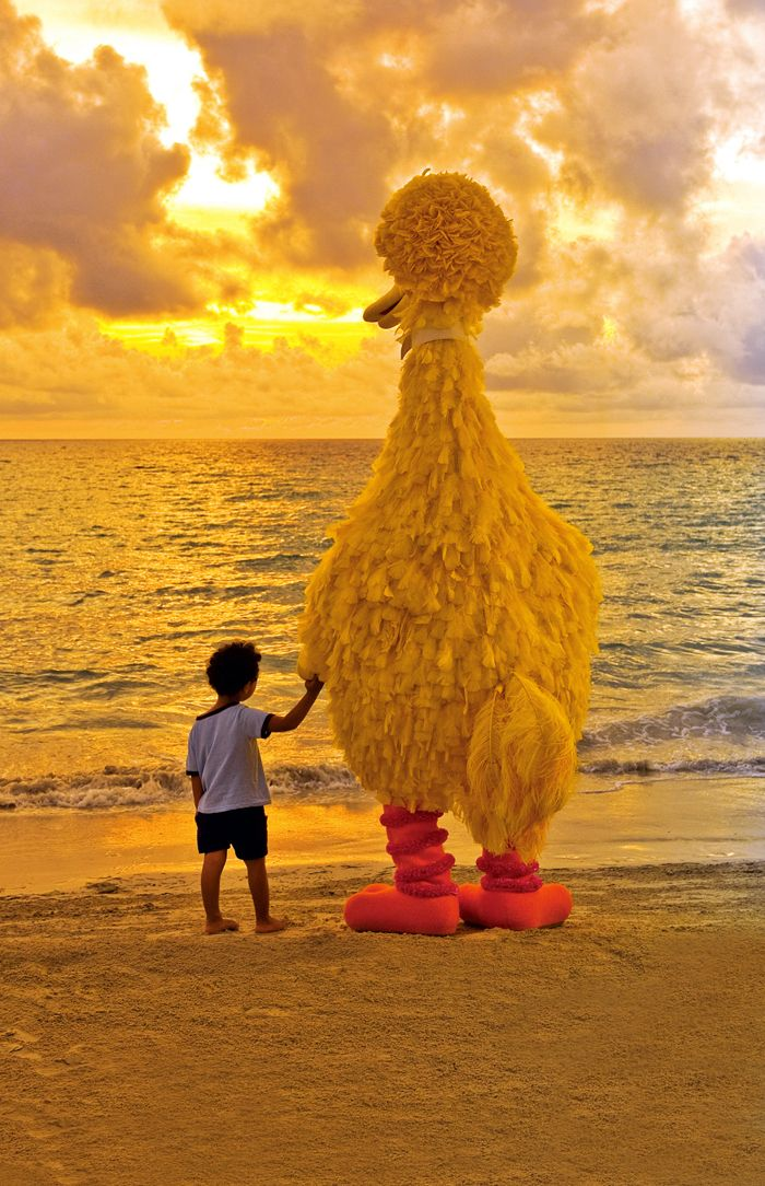 Enjoying the sunset with big bird....There truly is no better all-inclusive tropical family vacation than a Beaches vacation.