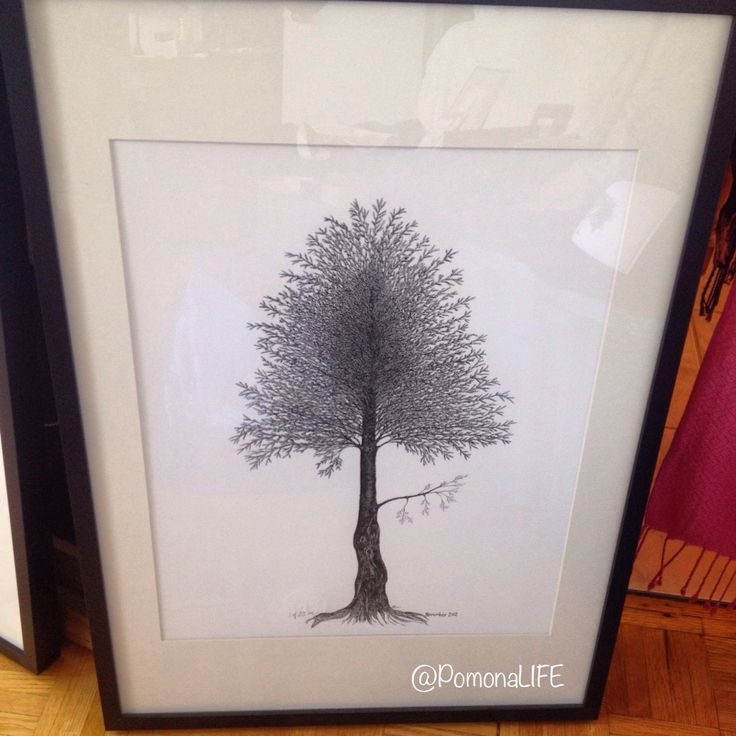 """My art is love x~a.   """"November 2012"""" Limited Ed Print. Learn more www.acurrie.com  #artislove #mylifewithapen #acurrie #pomonalife #creatinglifeart #torontoartist #treeartist #natureart #art #drawing"""