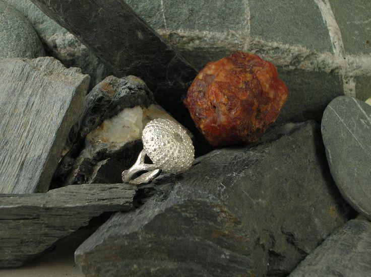 Anello in argento 925/1000 raffigurante un riccio di mare poggiato su un ramo di corallo realizzato con la tecnica della cera persa. #RRorafi #GioielliCheAttraversanoIlTempo #Jewels