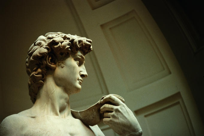 Il Davide. L'Accademia, Florence.