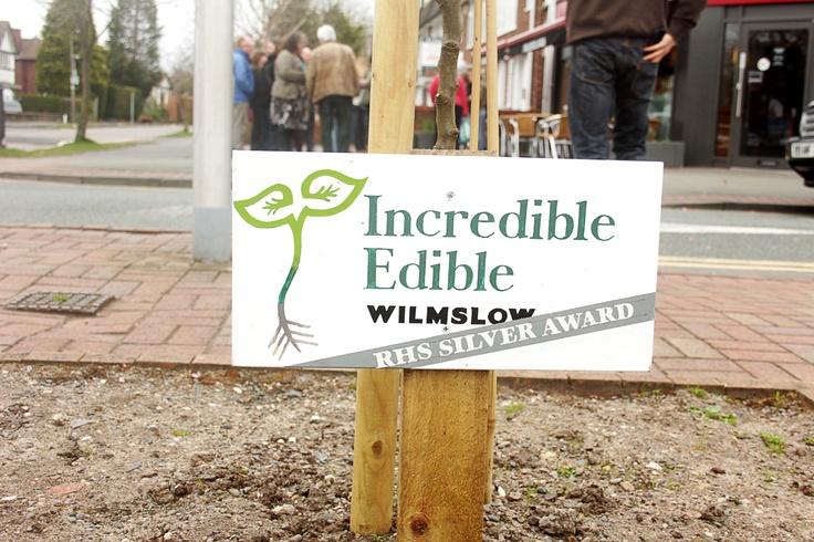 Incredible Edible Wilmslow Launch Event - http://incredibleediblenetwork.org.uk/blog/plentiful-and-positive-plots-incredible-edible-wilmslow
