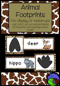 Arctic Animal theme vocab cards