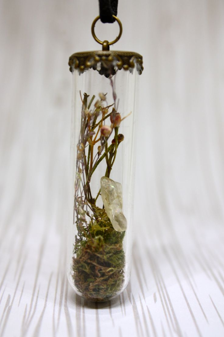 A beautiful enchanted dragon garden tube vial filled with moss dried flowers and a little sunstone. Such beautiful energies held in the perfect magical vial. Vial sits at 5.5cm tall with a bronze...