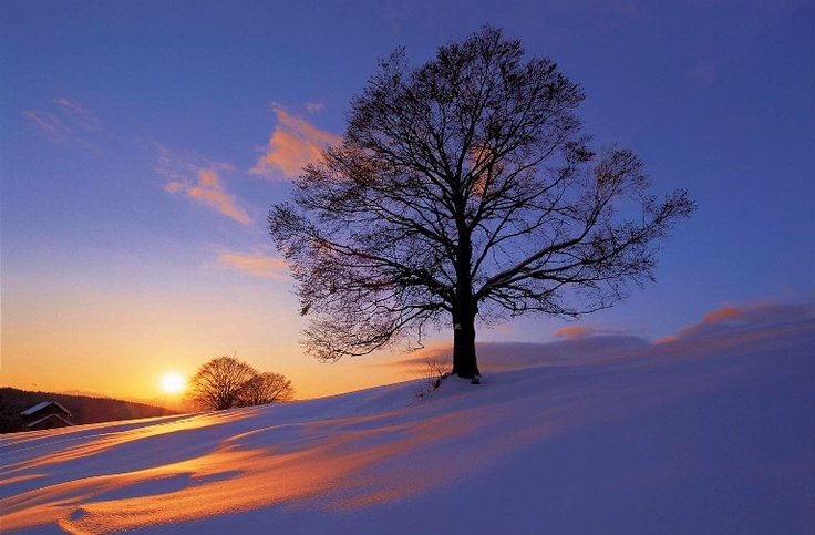 Magico tramonto invernale...