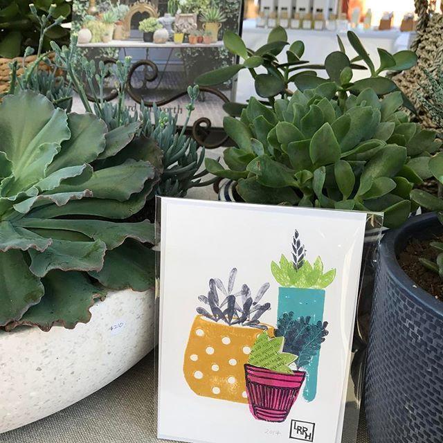 A succulent print amongst the succulents!
