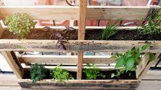 Vous manquez d'espace sur votre balcon? Voici la solution trop jolie, qui en plus est faite de matériel recyclé: un jardin en palettes de bois!