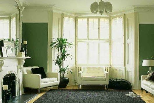 Desain Ruang Keluarga Minimalis Bernuansa Hijau Segar